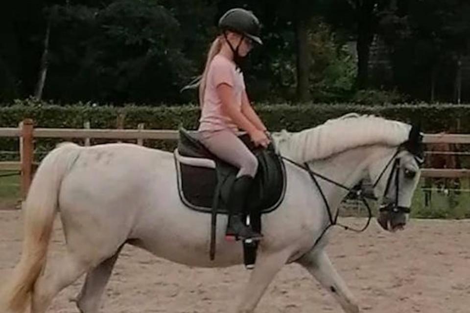 lid-2020-Nikki-Mulder-pony-Melga-CT-02_Ponyclub-Meppel