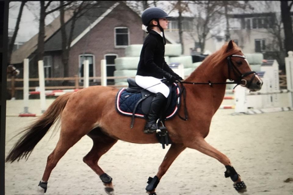 lid-2021-Jill-Hamstra-pony-Emmely-CT-04_Ponyclub-Meppel